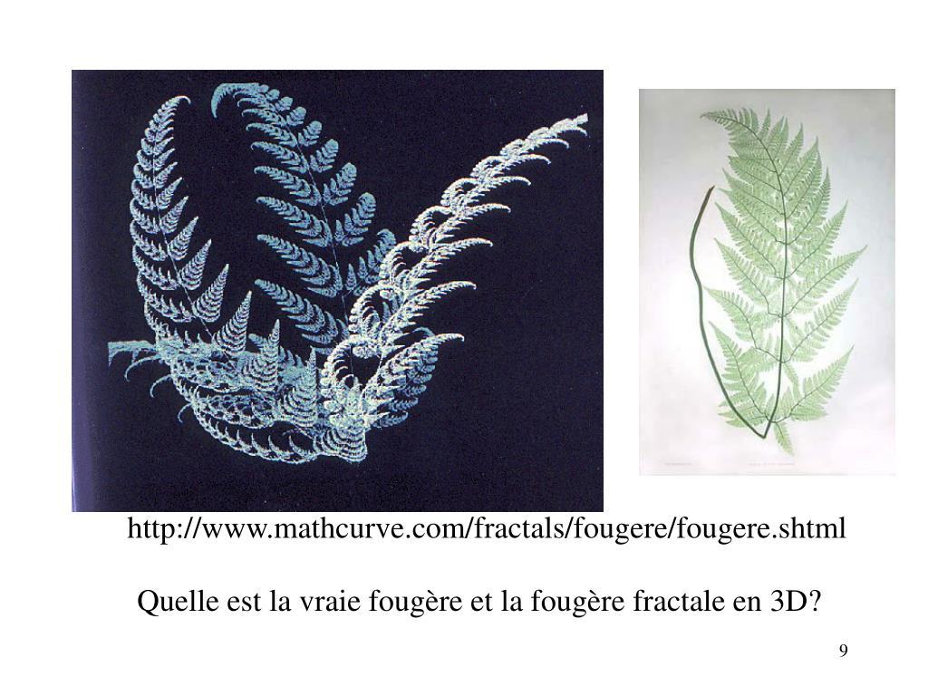http://www.mathcurve.com/fractals/fougere/fougere.shtml