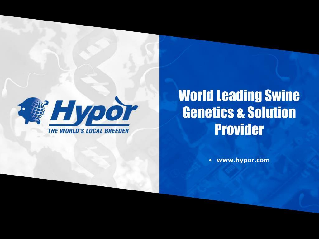 world leading swine genetics solution provider l.