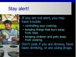 stay alert10