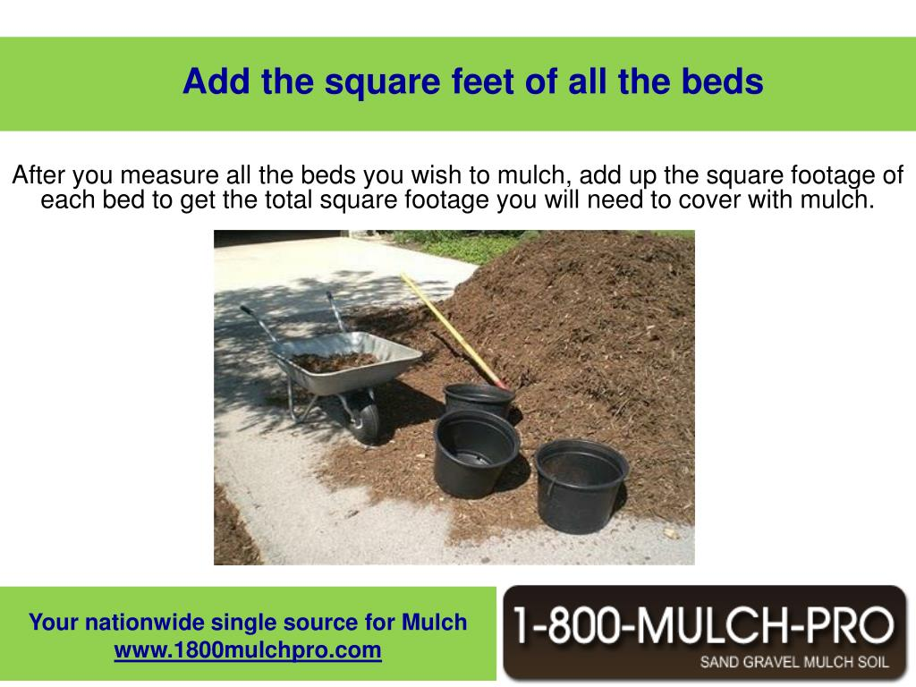 Add the square feet of all the beds