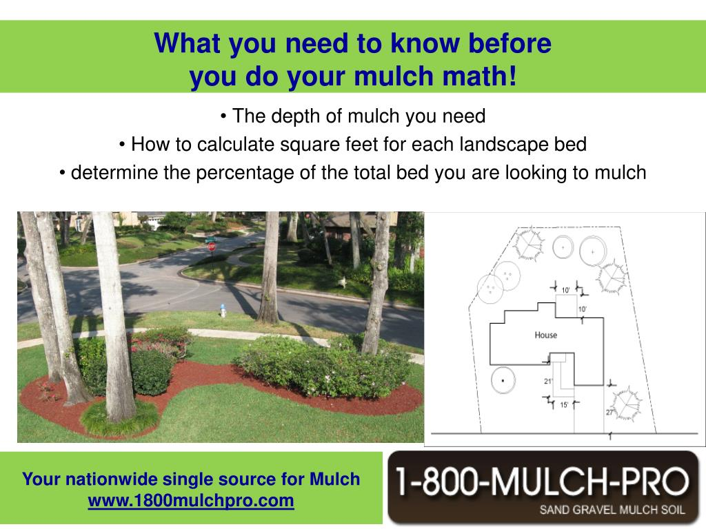 Mulch is an important component of your beds but mulching is not easy. Mulch can get complicated. Especially when you need to determine how much mulch you need. When applying mulch you need to determine the depth of mulch you want. It is suggested that you apply 3 to 4 inches of mulch to your beds.