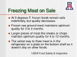 freezing meat on sale17