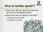 what do families spend