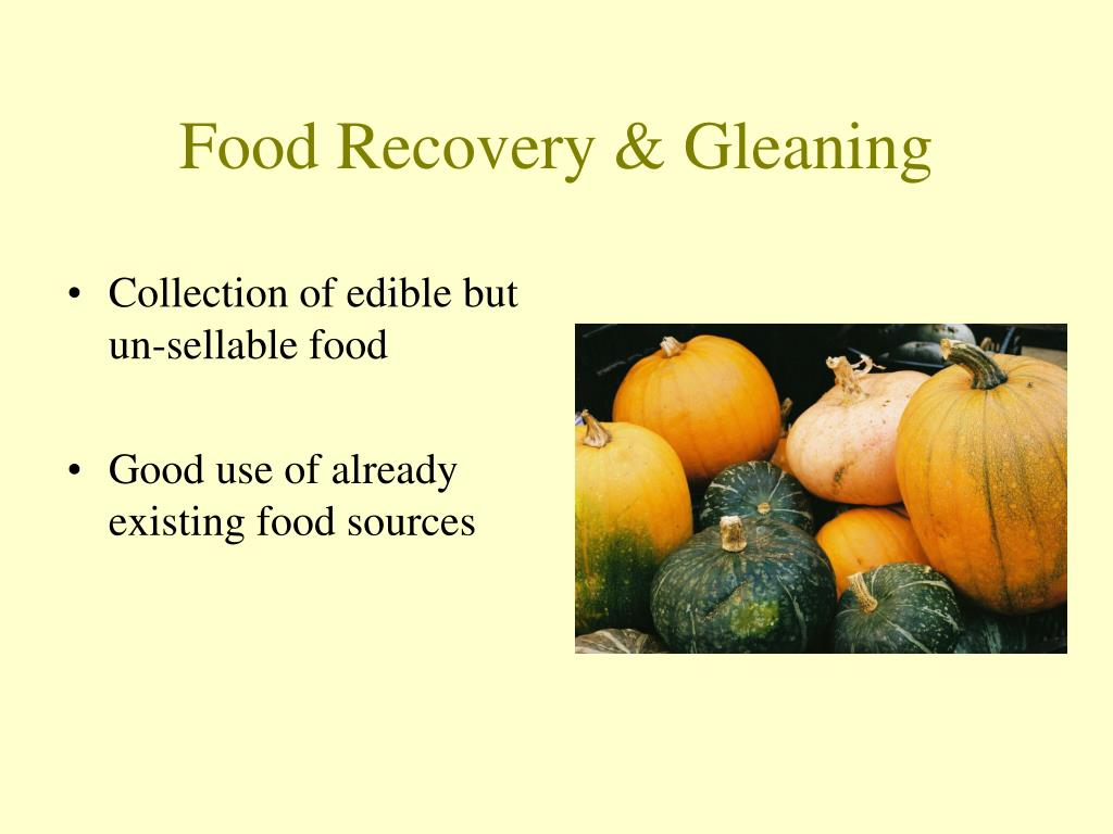 Food Recovery & Gleaning