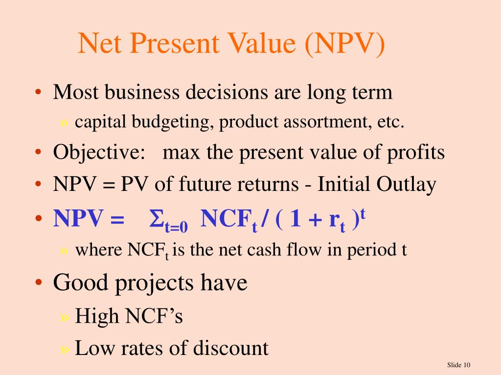 net present value and project