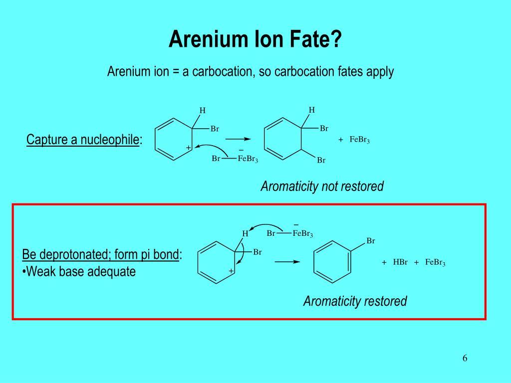 Arenium Ion Fate?