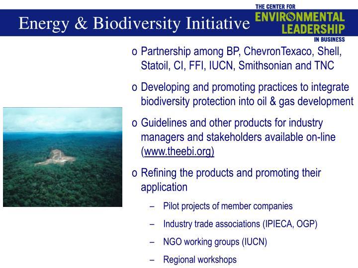 Energy & Biodiversity Initiative