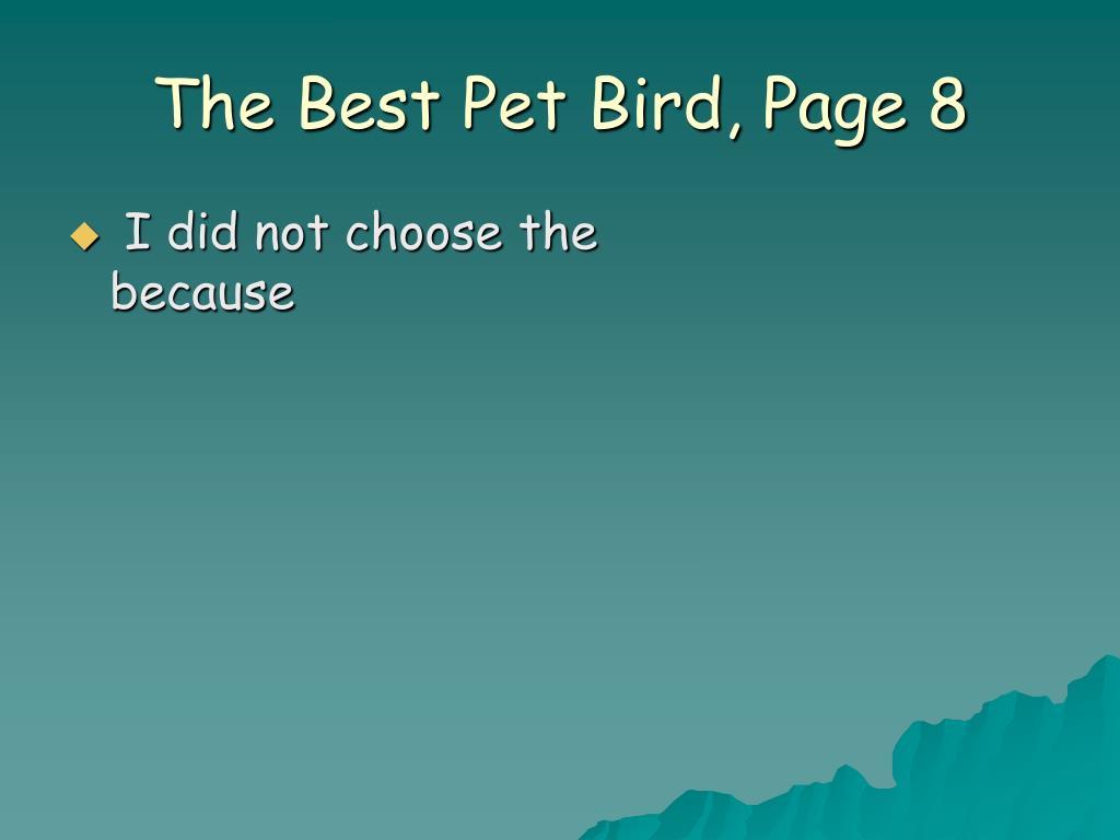The Best Pet Bird, Page 8