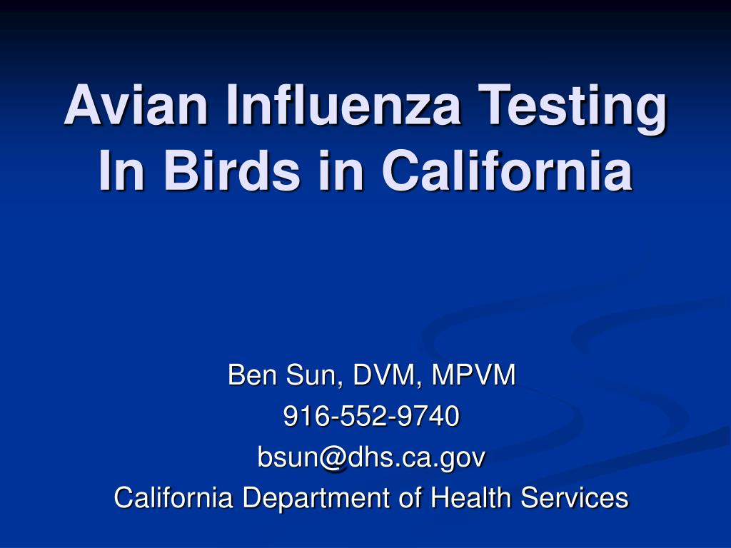 Avian Influenza Testing In Birds in California