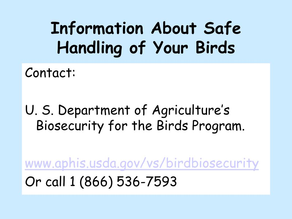 Information About Safe Handling of Your Birds