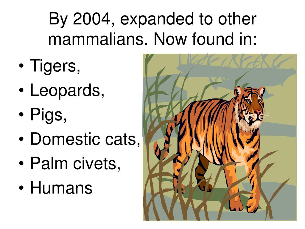 By 2004, expanded to other mammalians. Now found in: