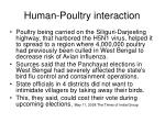 human poultry interaction