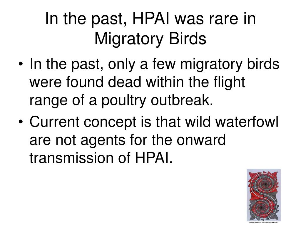 In the past, HPAI was rare in Migratory Birds