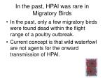 in the past hpai was rare in migratory birds