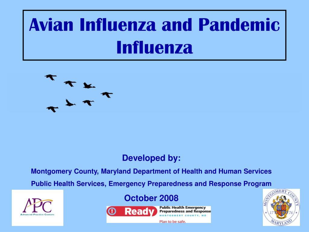 avian influenza and pandemic influenza l.