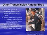 other transmission among birds