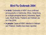bird flu outbreak 2004