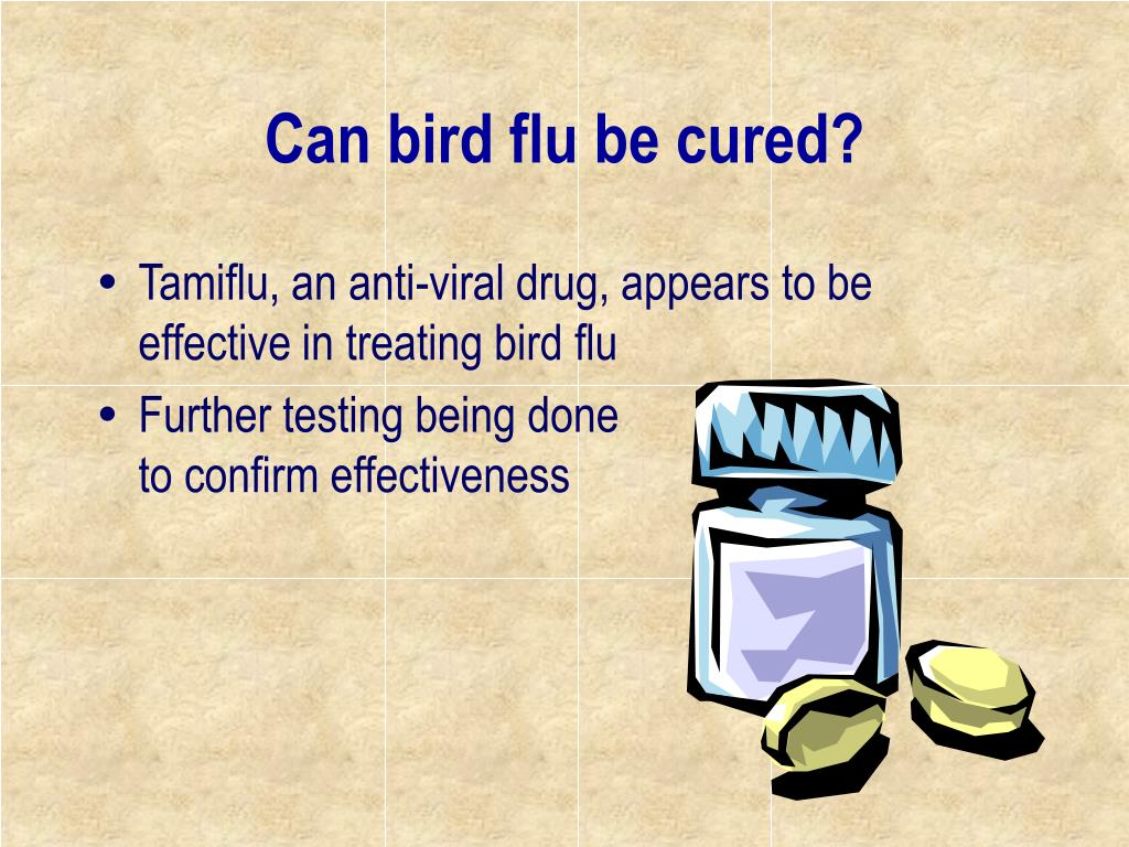 Can bird flu be cured?