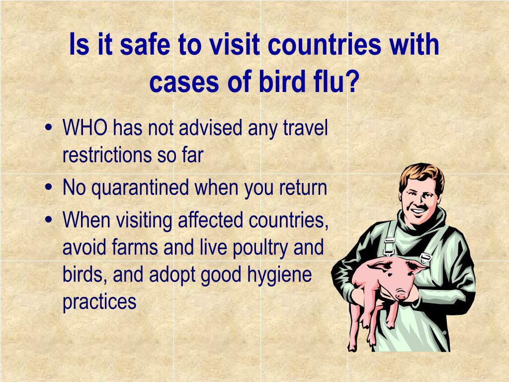 Is it safe to visit countries with cases of bird flu?