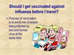 should i get vaccinated against influenza before i travel30