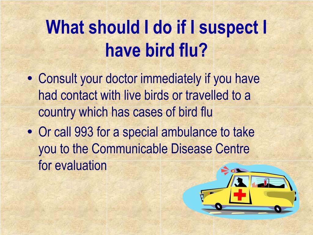What should I do if I suspect I have bird flu?