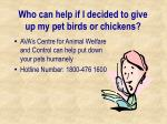 who can help if i decided to give up my pet birds or chickens