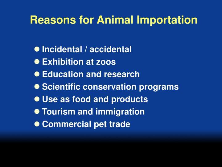 Reasons for animal importation