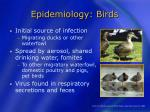 epidemiology birds