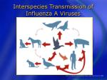 interspecies transmission of influenza a viruses