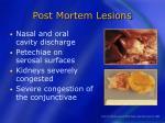 post mortem lesions28
