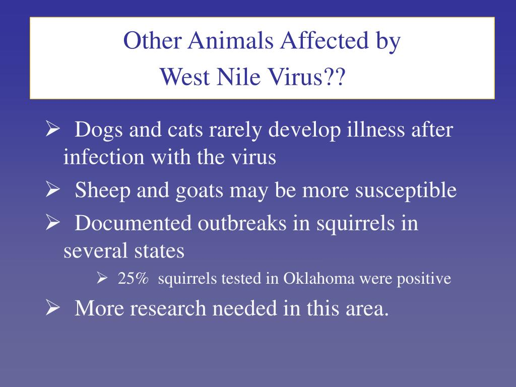 Other Animals Affected by