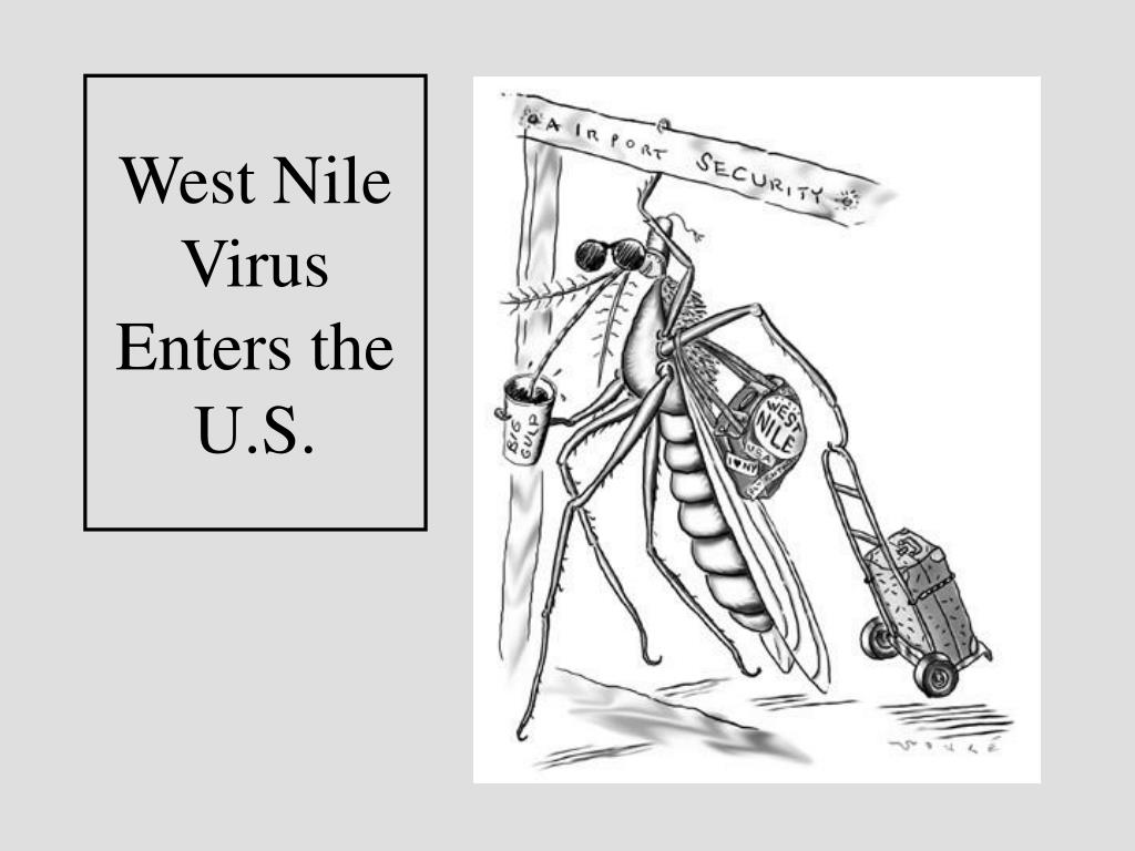West Nile Virus Enters the U.S.