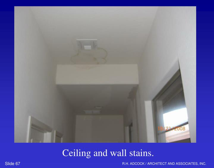 Ceiling and wall stains.
