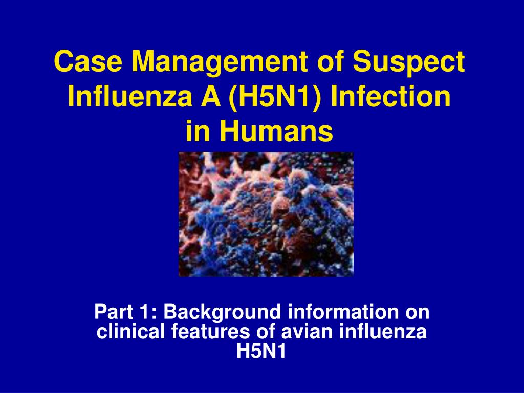 case management of suspect influenza a h5n1 infection in humans l.