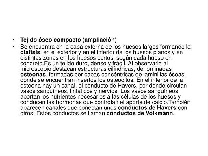 PPT - Sistema locomotor PowerPoint Presentation - ID:615349