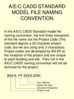 a e c cadd standard model file naming convention