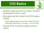 co2 basics