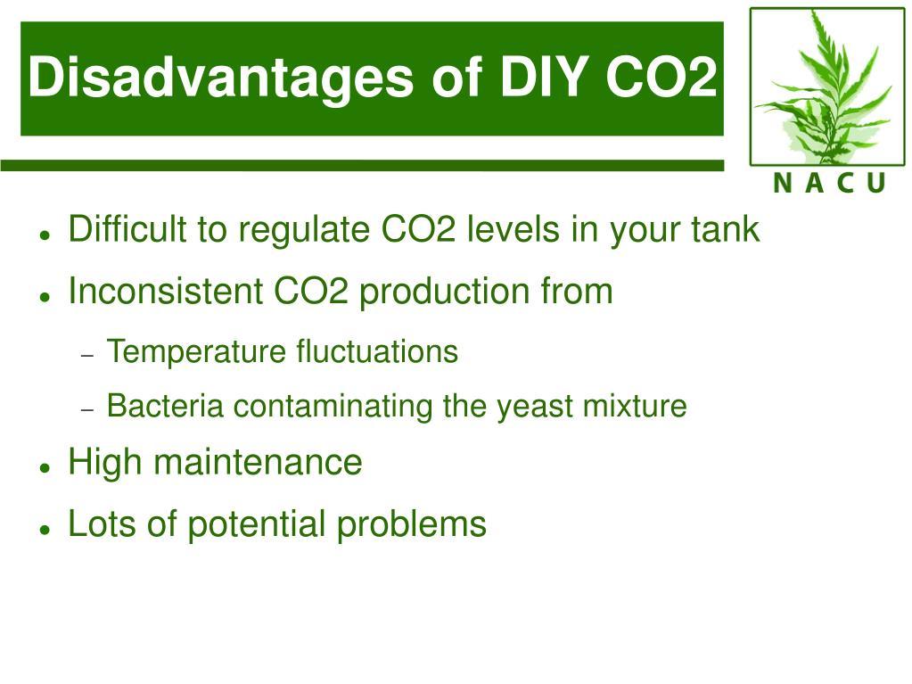 Disadvantages of DIY CO2