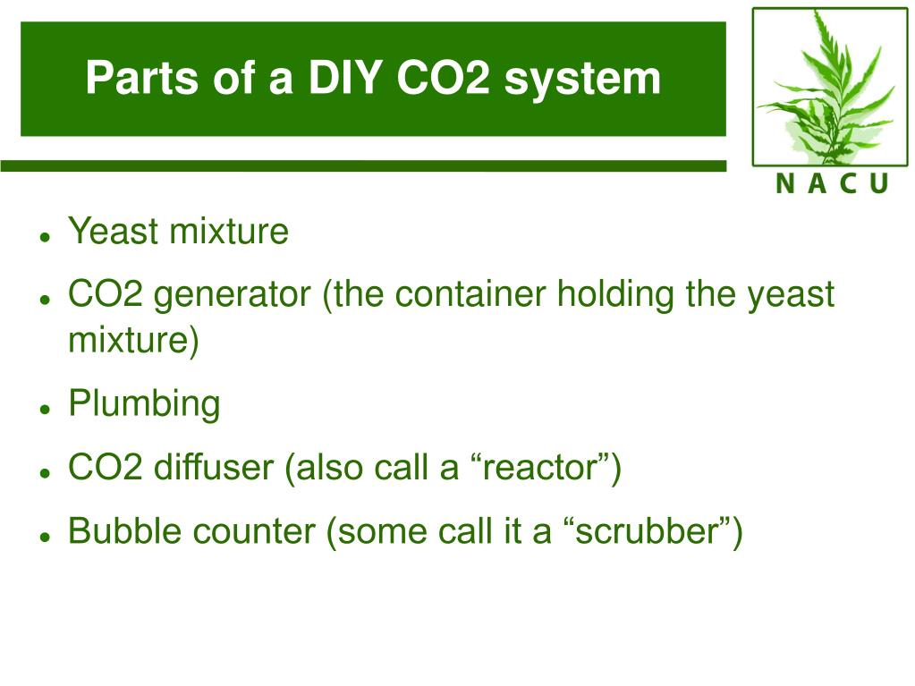 Parts of a DIY CO2 system