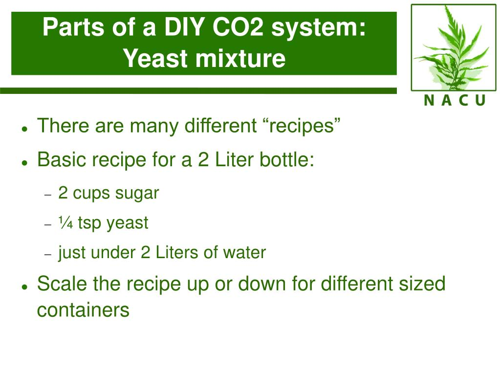 Parts of a DIY CO2 system: