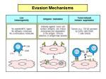 evasion mechanisms