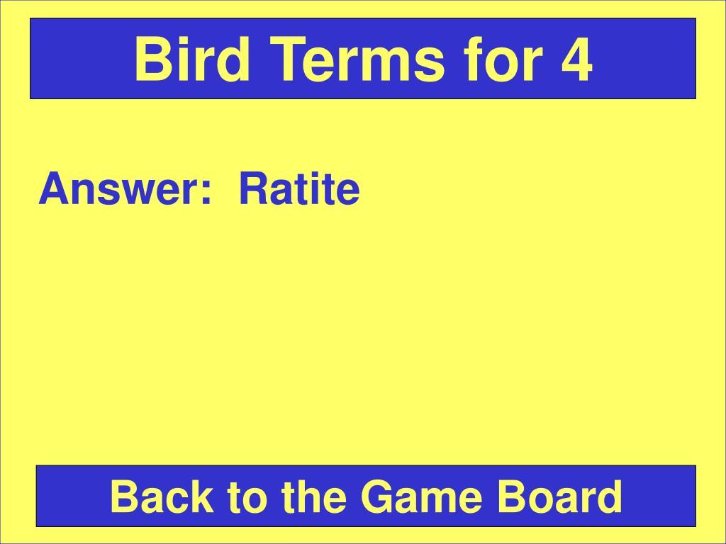 Bird Terms for 4