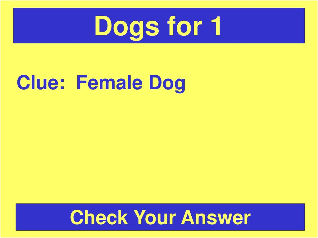 Dogs for 1