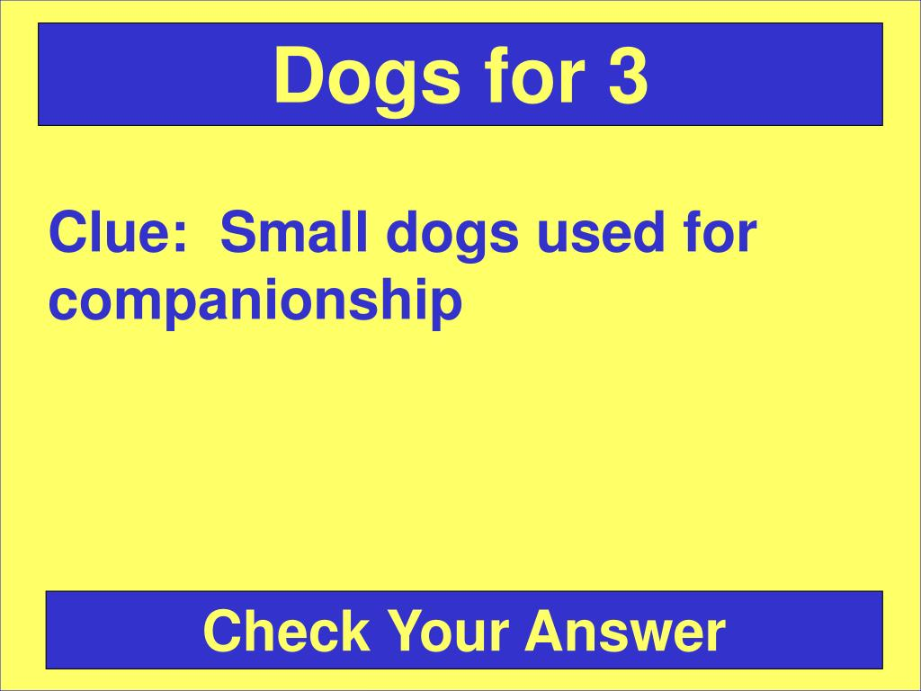 Dogs for 3