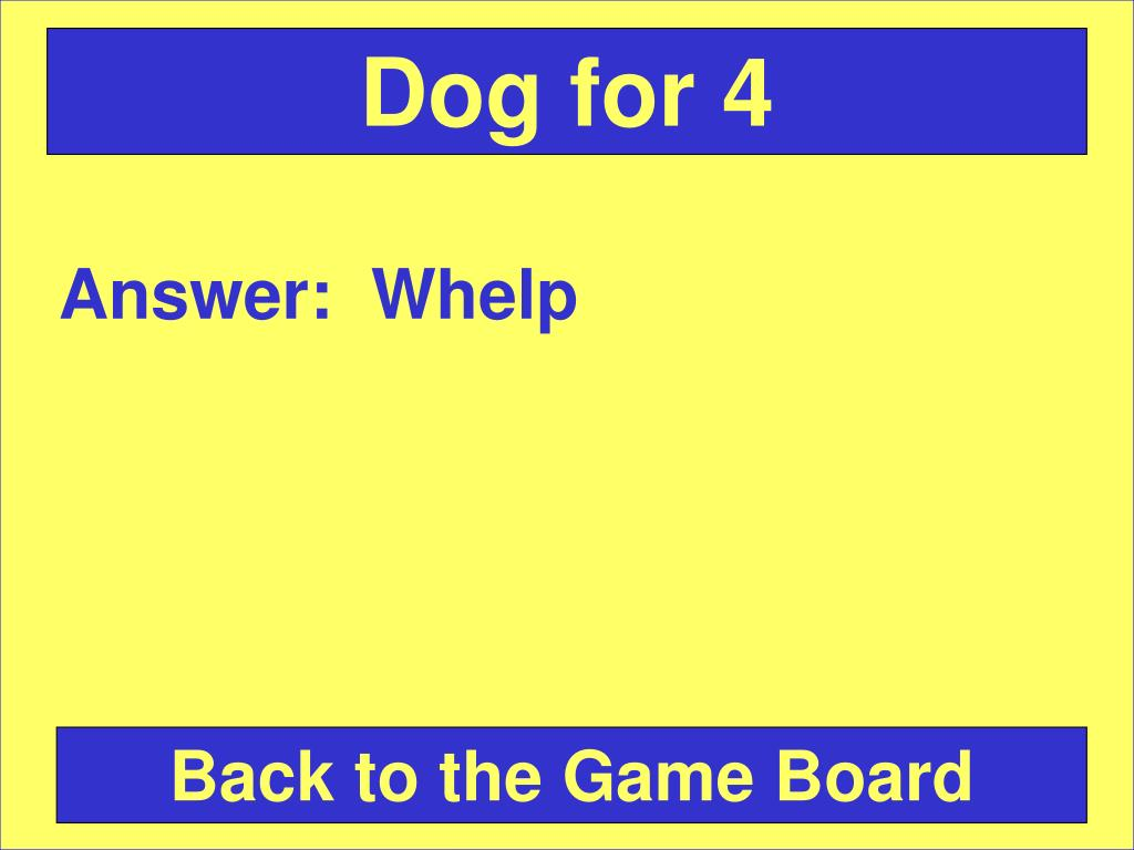 Dog for 4