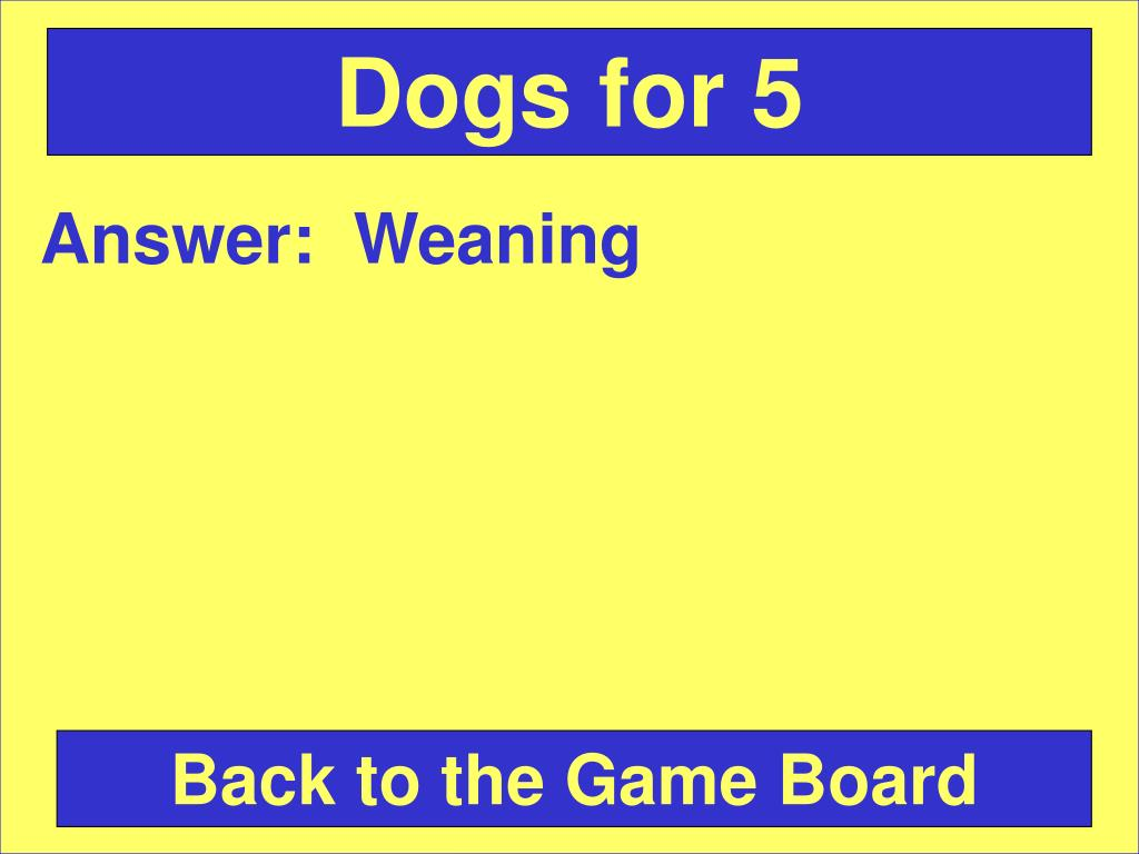 Dogs for 5