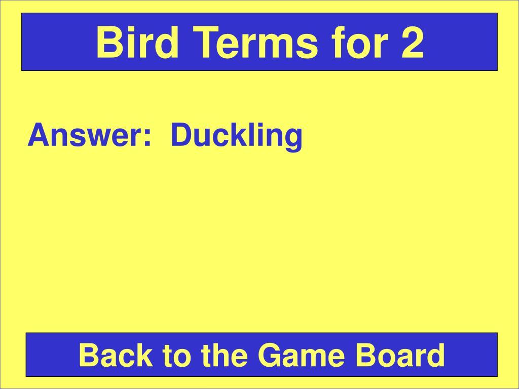 Bird Terms for 2