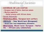 multiracial societies