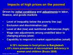 impacts of high prices on the poorest