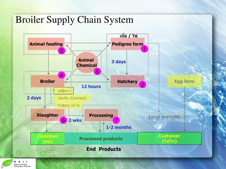 Broiler Supply Chain System